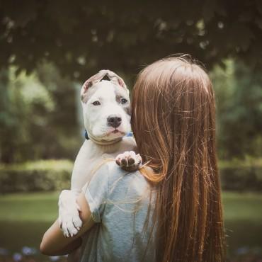 Альбом: Фотосъемка животных, 14 фотографий