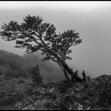 Альбом: Плёнка СФ Ч/Б - Пейзаж , 10 фотографий