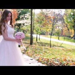 Видео #698696, автор: Александр Юстус