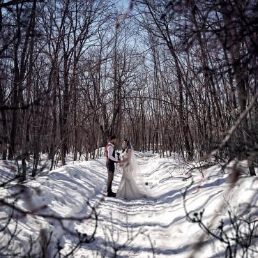 Альбом: Зимняя Свадьба, 12 фотографий