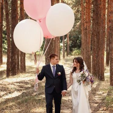 Альбом: Свадебная прогулка, 14 фотографий