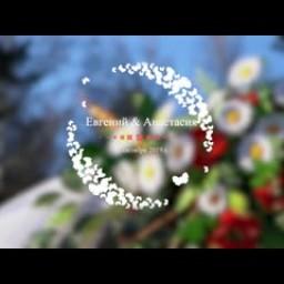 Видео #703855, автор: Вячеслав Фомин