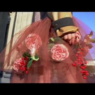 Видео #711002, автор: Валентина Рыцарева