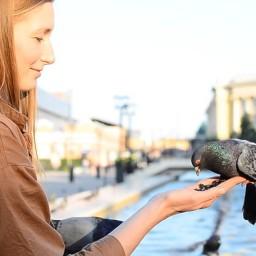 Видео #711018, автор: Лена Чернышёва