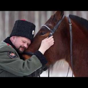Видео #715432, автор: Михаил Семенов