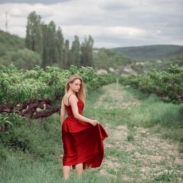 Фотография #720520, автор: Александра Погребняк