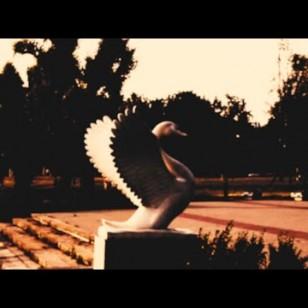 Видео #728836, автор: Trancemetallmaster Music