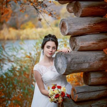 Фотография #506406, автор: Елена Лагода