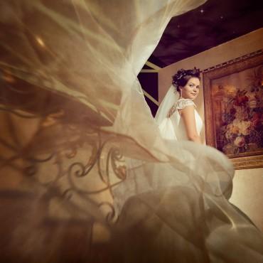 Фотография #505314, автор: Дмитрий Додельцев