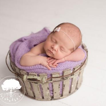 Фотография #508716, автор: Фотостудия для новорожденных