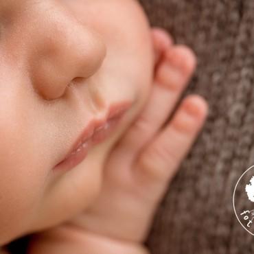 Фотография #508737, автор: Фотостудия для новорожденных