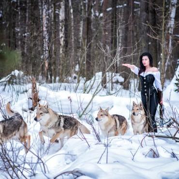 Фотография #518150, автор: Ирина Пирогова