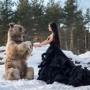 Фотография #518186, автор: Ирина Пирогова