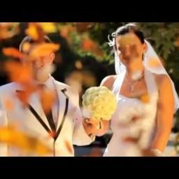 Видео #503132, автор: Юрий Гарячий