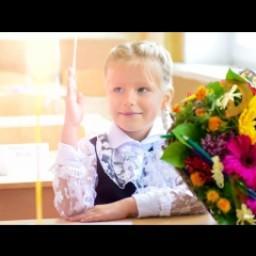 Видео #503179, автор: Алена Старцева