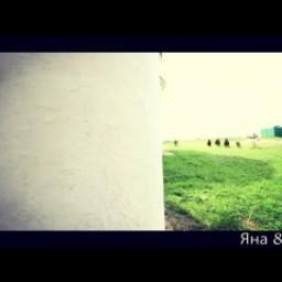 Видео #503193, автор: Виталий Медведев