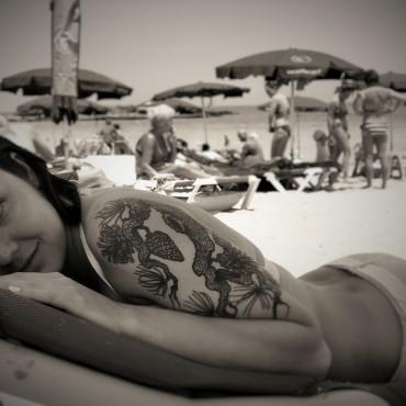 Фотография #519766, автор: Екатерина Корнева