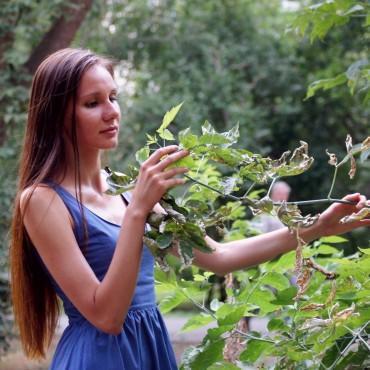 Фотография #515814, автор: Елена Бородина