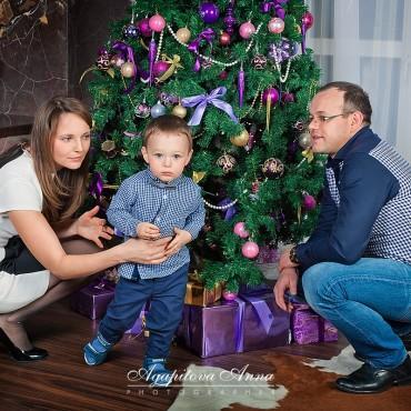 Фотография #450649, автор: Анна Агапитова