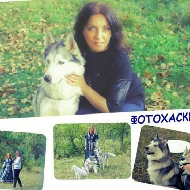 Фотография #67120, автор: Людмила Метлева