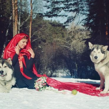 Фотография #76369, автор: Анастасия Пантелеева