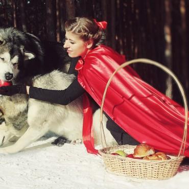 Фотография #76371, автор: Анастасия Пантелеева