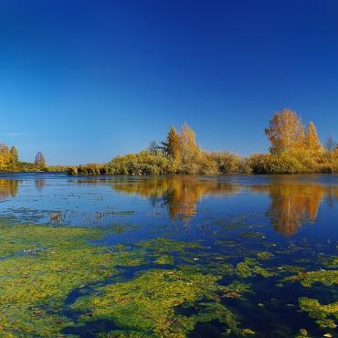 Фотография #105594, автор: Николай Кандауров