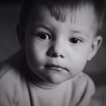 Фотография #78423, автор: Кирилл Лаптев