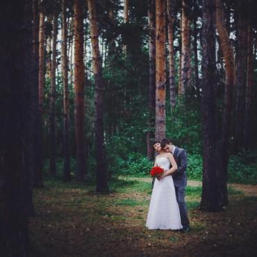 Фотография #81457, автор: Юлия Лебедева