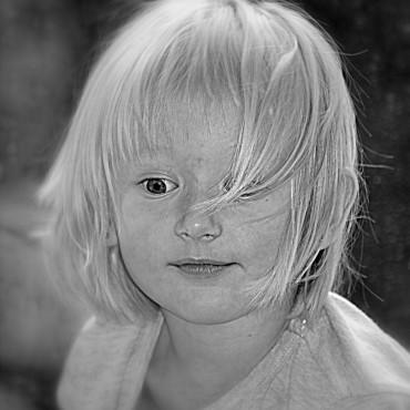 Фотография #83698, автор: Александр Сорокин