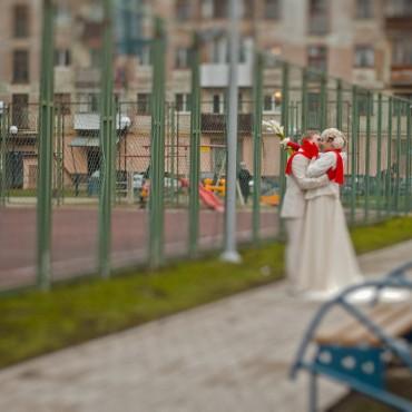Фотография #83774, автор: Юлия Серова