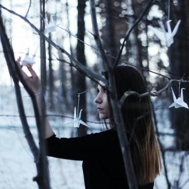 Фотография #94478, автор: Анастасия Паздникова