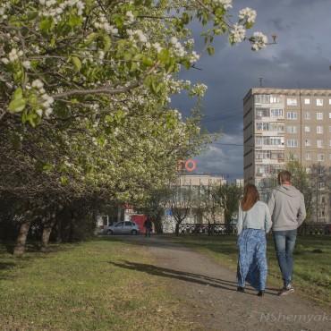 Фотография #98143, автор: Надежда Шемякина