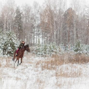 Фотография #98166, автор: Надежда Шемякина