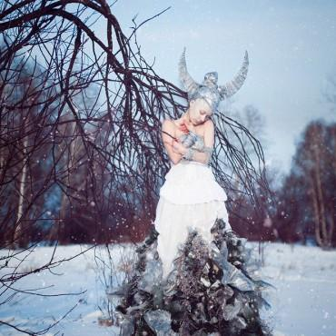 Фотография #97886, автор: Татьяна Антусенок