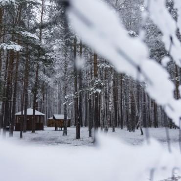 Фотография #104692, автор: Наталия Белозерова