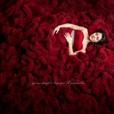 Фотография #659434, автор: Линара Хусаинова