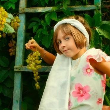 Альбом: Детская фотосъемка, 36 фотографий
