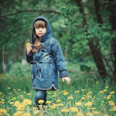 Фотография #671805, автор: Людмила Королева