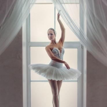 Фотография #227310, автор: Юлия Огородникова