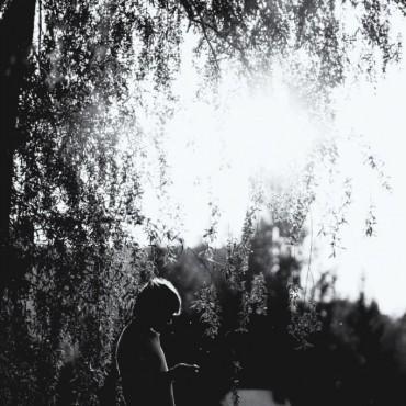 Фотография #209287, автор: Дмитрий Казанцев