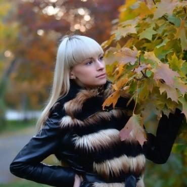 Фотография #216435, автор: Виктор Дмитриев