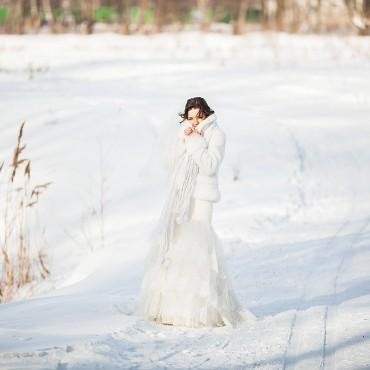 Фотография #217265, автор: Геннадий Спиридонов