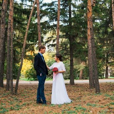 Фотография #229203, автор: Екатерина Старцева