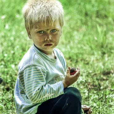 Фотография #218193, автор: Ирина Трофимчук