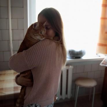 Фотография #220746, автор: Елизавета Мосиенко
