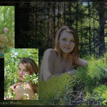 Фотография #222200, автор: Елена Ткаченко