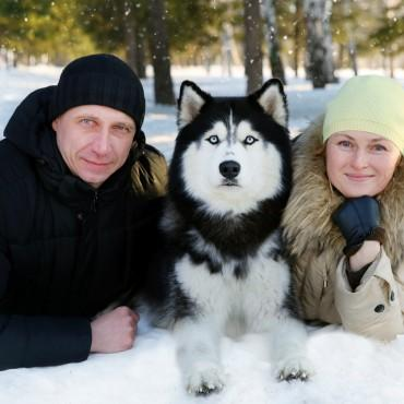 Фотография #233455, автор: Наталья Чагина
