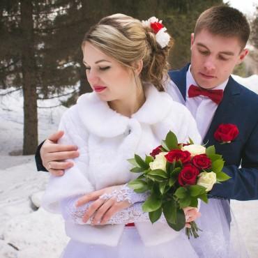 Фотография #225571, автор: Станислав Евсеев
