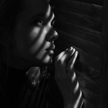 Фотография #231675, автор: Светлана Каритун